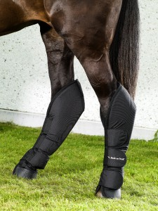 2013_Transport-Boots-hind-legs