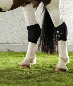 2015+2016_Horse-Knee-Brace+Hock-Brace-