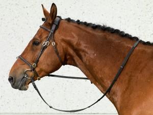 2043_Horse-Neck-Cap