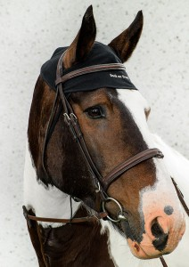 2043_Horse-Neck-Cap-detail