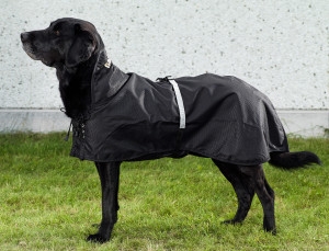 3250+3255_Dog Rain-Rug-labrador